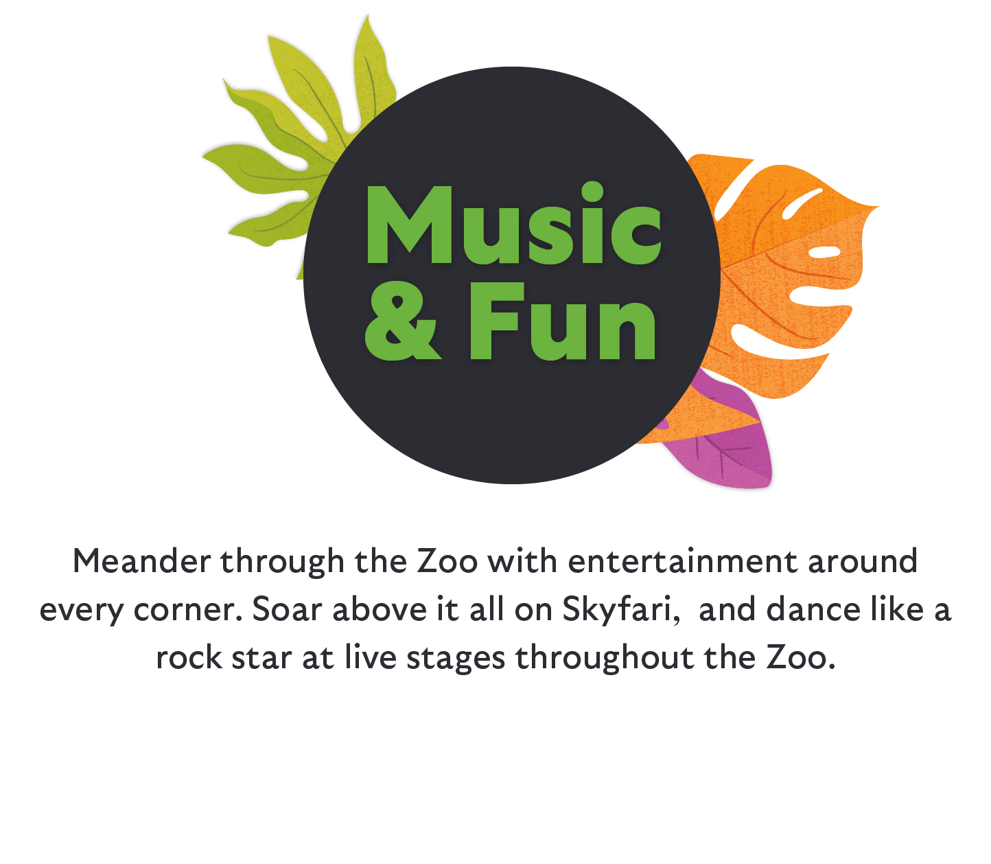 Meander through the Zoo with entertainment around every corner. Soar above it all on Skyfari, and dance like a rock star at live stages throughout the Zoo.